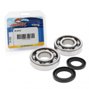 All Balls Honda Crankshaft Bearing & Seal Kit