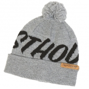 Fasthouse Fastball Heather Grey Beanie